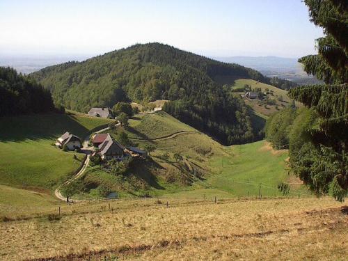 MTB Tour Schwarzwald