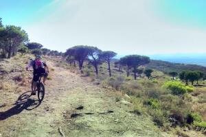 Belchenradler MTB Tour