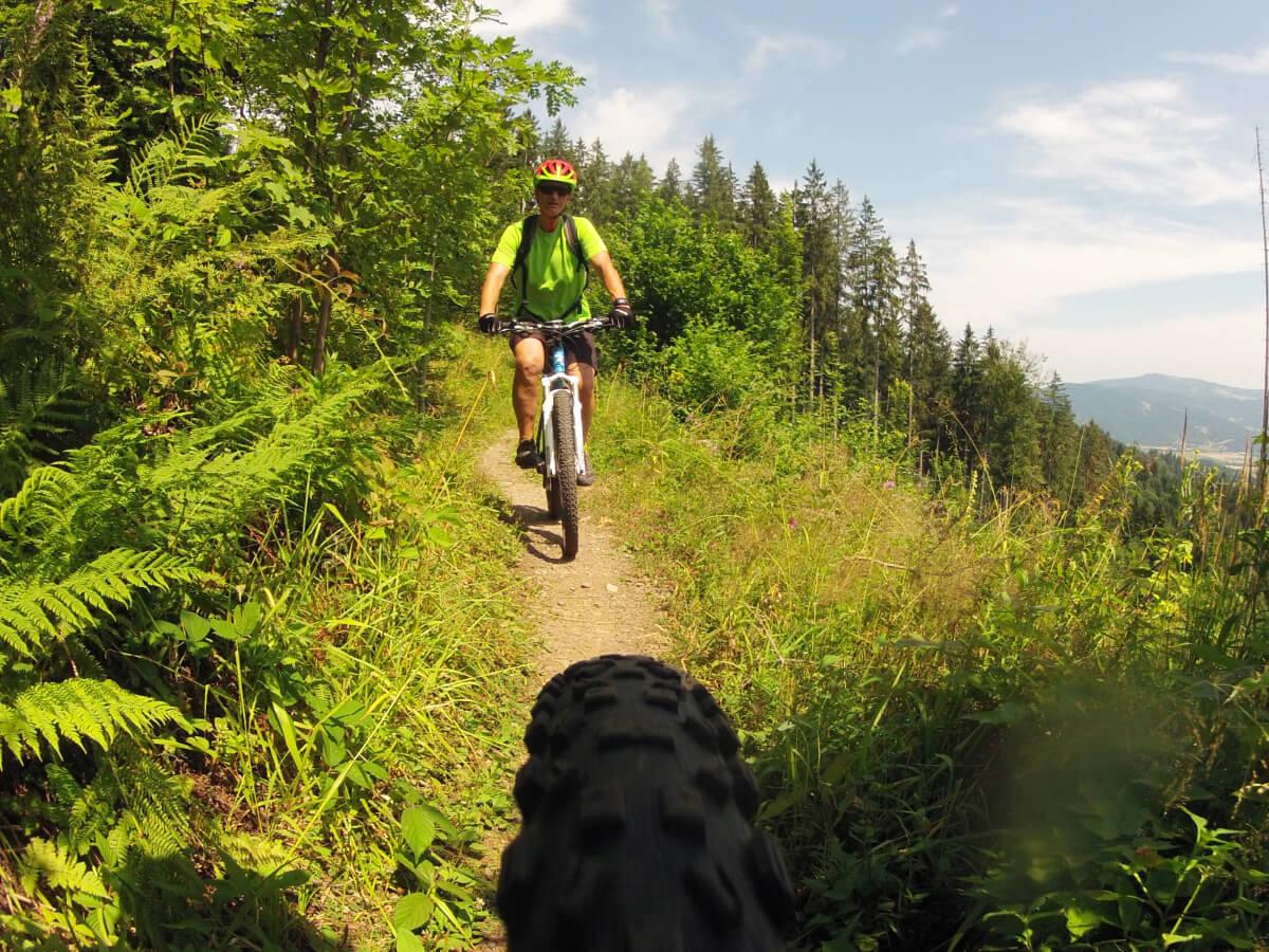 Trail zum Schauinsland