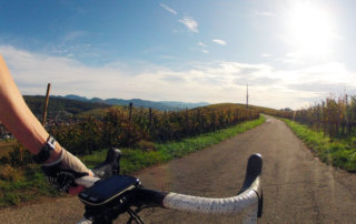 Rennrad & Genusstage Staufen