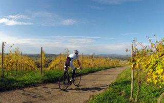 Rennradtour Batzenberg