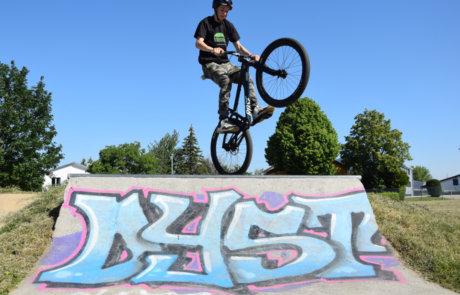 Finn im Skatepark