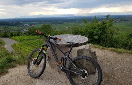 Aussichtspunkt im Kaiserstuhl